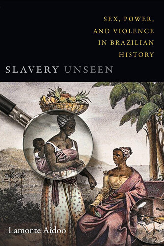 Slavery Unseen Sex Power and Violence in Brazilian History